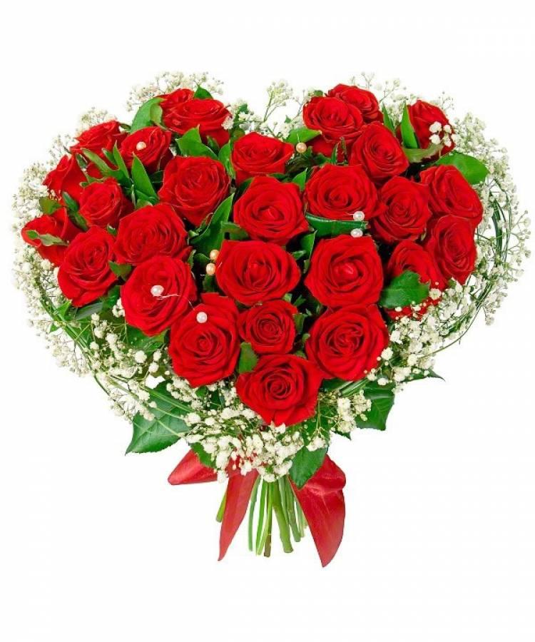 картинки большие букеты роз для любимой обучении